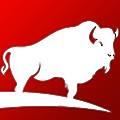 The Buffalo Group logo