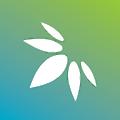 Surterra Wellness logo