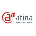 Atina logo