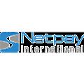 Netpay International logo