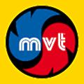 Mion Ventoltermica logo