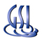 GSI Technology logo