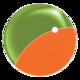 Holosfind logo