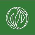 Adams and Associates logo