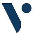 Viscout International logo