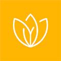 Liliom logo