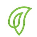 Leaf Global Fintech logo
