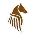 Pegasus Fintech logo
