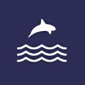 Orca Money logo