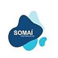 Somai Pharmaceuticals logo