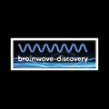 Brainwave Discovery logo