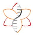 Amaryllis Nucleics logo