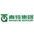 Qingte Group