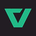 Anyverse logo