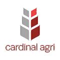 CAPI logo