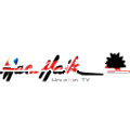 Mac Haik Ford logo