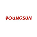 Hangzhou Youngsun Intelligent Equipment logo