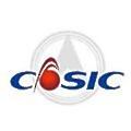 CASIC logo