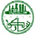 Saudi Arabia Refineries