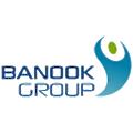 Banook Group logo