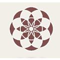 CorpCom.mx logo