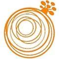 Baobab Soluciones logo