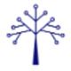 BlueOak Resources logo