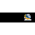 Cognitor logo