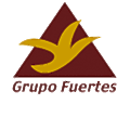 Strong Group logo