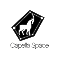 Capella Space logo