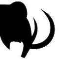 Mammoth Workwear logo