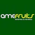 Amefruits logo