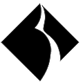 Black Diamond Networks logo