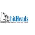 bitHeads logo