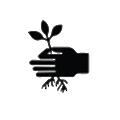 Spinieo logo