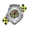 PatchPlus Consulting logo
