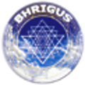 Bhrigus logo