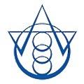 Holy Stone International logo