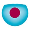 Imagine Eyes logo