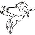 Pegasus Infocorp