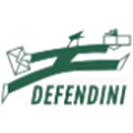 Defendini Logistica logo