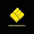 Ensor Holdings logo