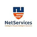 NetServices logo