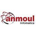 Anmoul Infomatics logo