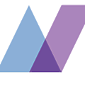 Netsolace Inc logo